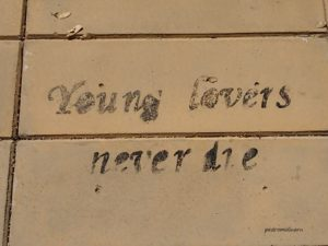 young-lovers-never-die